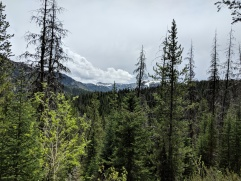 View towards Terrace Mountain